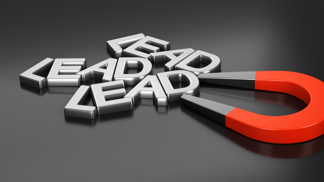 Lead Magnets offering learning value