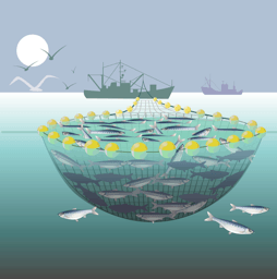trawl-the-internet